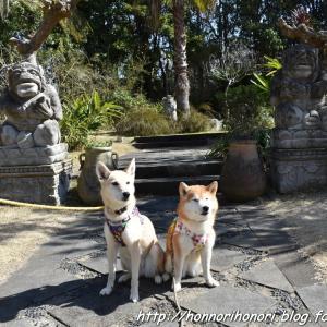 浜名湖ガーデンパークでお散歩♪ vol.3