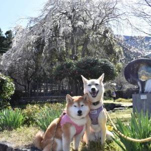 大津谷公園へ♪ vol.1