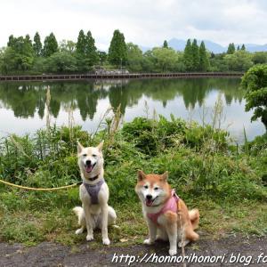 北勢中央公園でお散歩♪ vol.2