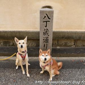 岡崎さんぽ♪ vol.5 - 城下町歩き -