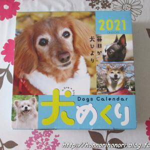 祝・採用♪ 「犬めくり2021」&「柴めくり2021」