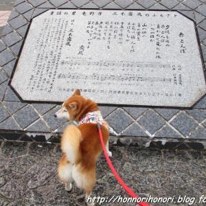 香川から京都へ・・・途中、兵庫で夕散歩♪ - 実家ツアー・17 (最終回) -