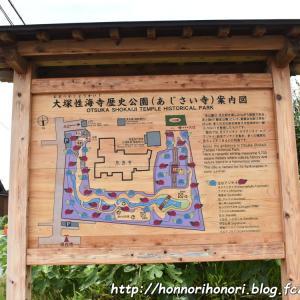 大塚性海寺歴史公園(あじさい寺)へ♪ vol.1