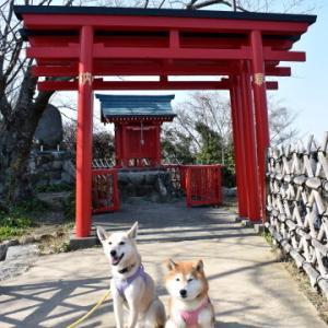 浜松城公園へ♪ vol.3