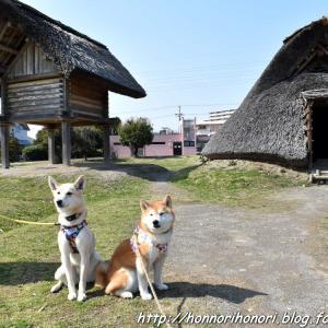 登呂遺跡へ♪ vol.2 - 静岡の旅・3 -