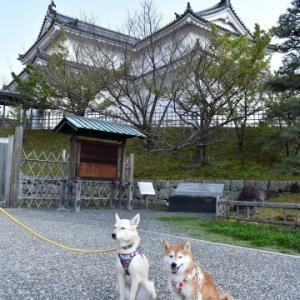 駿府城公園へ♪ vol.3 - 静岡の旅・7 -