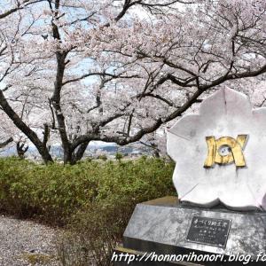 七谷川・和らぎの道で桜散歩♪ vol.3