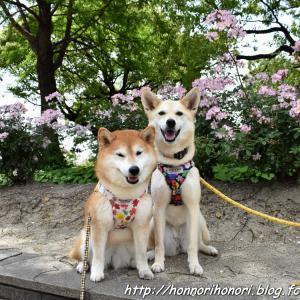 元浜公園へ♪ vol.1
