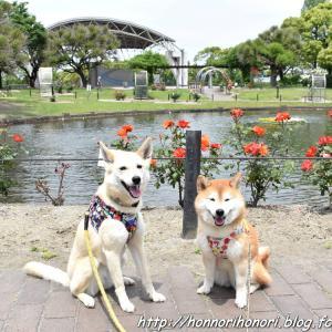 元浜公園へ♪ vol.2