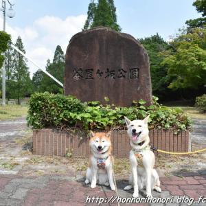 茶屋ヶ坂公園へ♪ vol.1