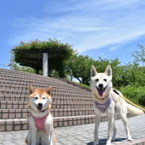 荒子川公園でお散歩♪ vol.2