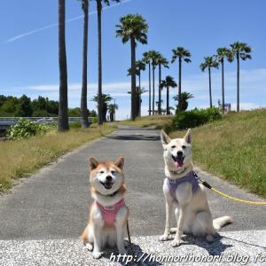 荒子川公園でお散歩♪ vol.3