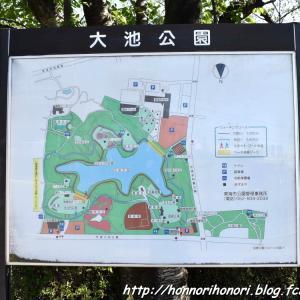 大池公園でお散歩♪ vol.1