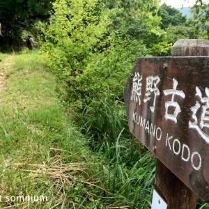 旅フォト:熊野古道中辺路その1/サンティアゴ巡礼番外編