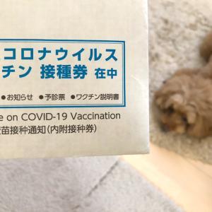 ようやくワクチン1回目!