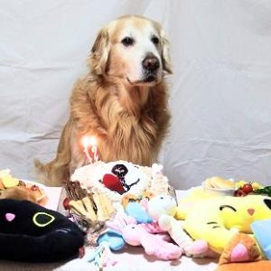 Happy Birthday ジャニ君 !! ♡12才♡