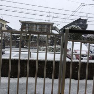 【新型コロナ】千葉県の障害者施設で86人感染