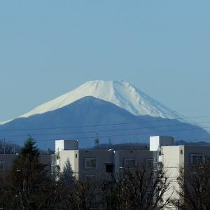 1月6日、午前の富士山と、外食~(*^ ^*)♬