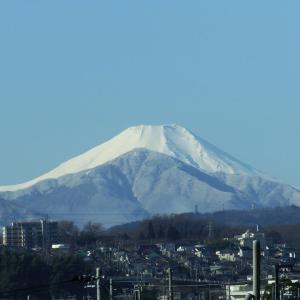 1月19日、午前の富士山と どんど焼き~