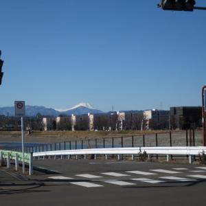 1月21日、午前の富士山と午後の丘陵地~♬