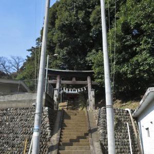 百草八幡神社の裏山散策~♪