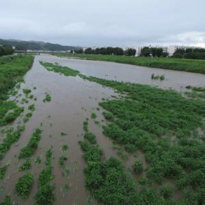 7月25日、大雨の中をひと周り~