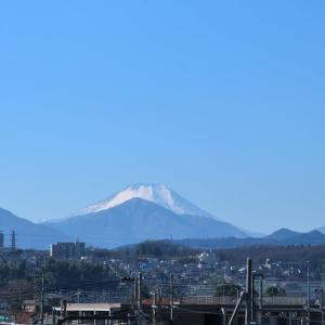 1月13日、昼の富士山~♪