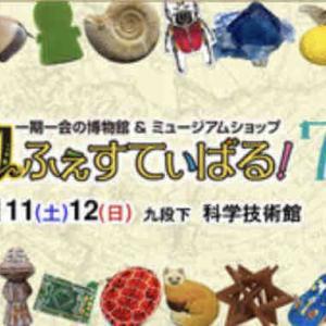 博ふぇす:明日8月1日(日)22:00~チケット発売開始です