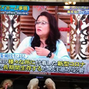 岡田晴恵先生