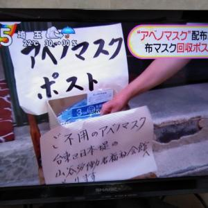 浅草にアベノマスクポスト