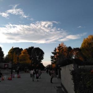 東京国立博物館 特別展「桃山 天下人の100年」後期 201120
