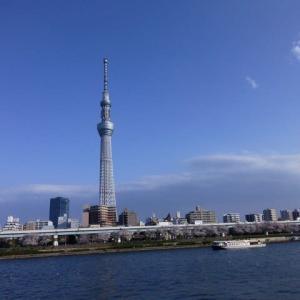 隅田公園の桜2021withコロナ 210326