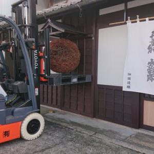 杉玉作り(1)