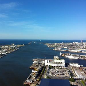 釣り場は増えるか?新潟県港湾問題、「知事への便り」の返信。