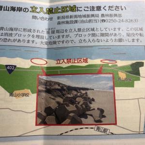 残念な事に、青山海岸の立ち入り禁止区域が拡大という事態に。