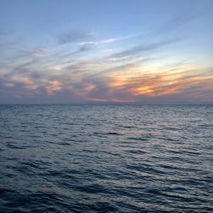 今日から日和山浜の突堤がオープンという事で、マナーとルールを守ってお互いに気持ち良く釣りをしたいものです。