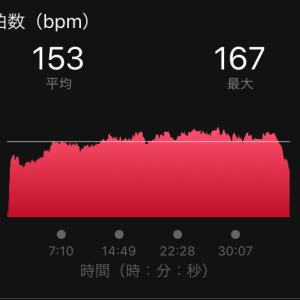 鏑木トレミその8と大阪マラソンラスト2.195キロ