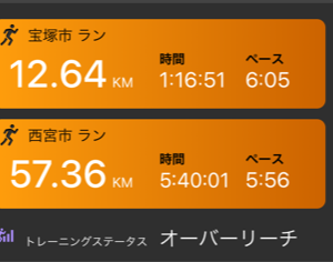 エア武庫川ユリカモメ70キロ