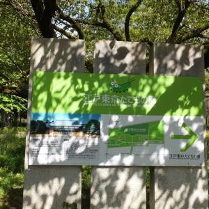 武蔵小金井にある「江戸東京たてもの園」と「小金井公園」の秋の一日  シリーズその1/全4回