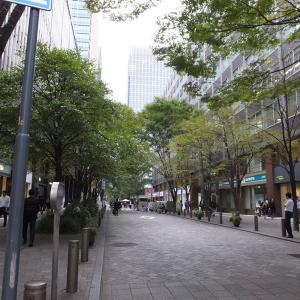 帝劇地下街の六甲クラブの集まりで「庄野潤三」さんの事を皆さんに話したあと、丸の内仲通りから東京駅へ歩いた