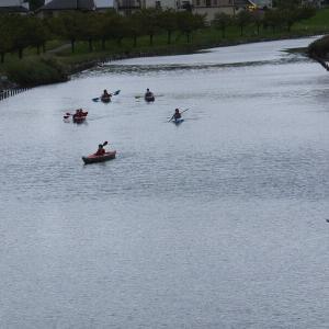 旧中川でカヌーを楽しむ人たち