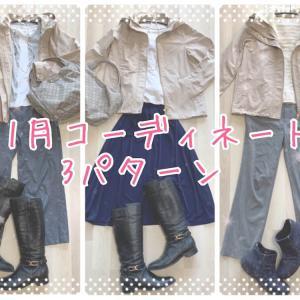 【40代小柄コーデ】だんだん寒くなる11月の3パターン(無印・ドゥクラッセ・PLST)