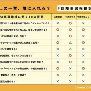 選挙に行こう7/5(日)は東京都知事選‼️