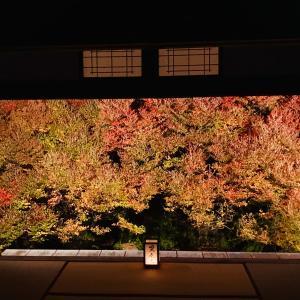 紅葉を、楽しんできました。日曜日の仕事終わりと月曜日のお休みは、紅葉三昧でした。播州清...