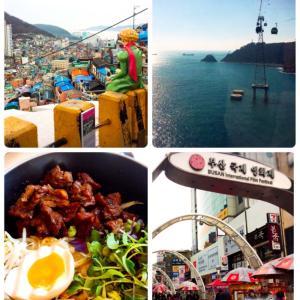 1年3ヶ月ぶりの釜山でした。