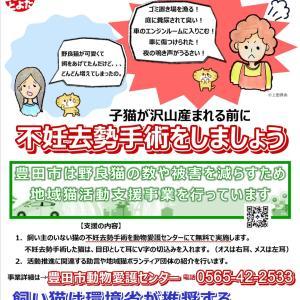 S10町の地域猫活動〜区長さんからの電話〜