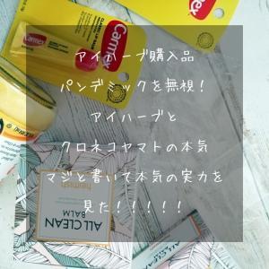 クロネコヤマトと iHerb 韓国倉庫の本気を見た!アイハーブ購入品紹介、お目当てはカーメックスのリップクリーム