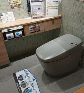 人気セレブも認める世界一の日本のトイレ!