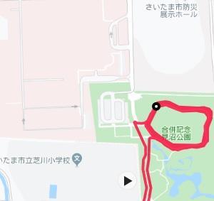 【さいたま国際】8週前のトレーニング(LT+持久力強化5)皇居4周。地元でスズメバチに刺される