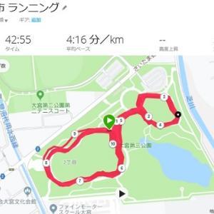 【さいたま国際マラソン】16週間前のトレーニング(持久力強化期3)ファルトレク10K、26K走